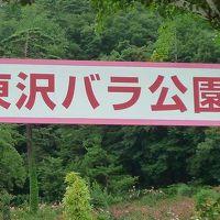 09年08月09日(日)、水入らずの旅(9)村山市「東沢バラ公園」に行ってきました。