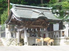 大正ロマンの銀山温泉と日本三景・松島 ドライブの旅(その2)~牡鹿半島~