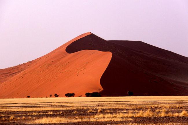 「ナミブ砂漠」<br />広さ 2万3,000平方?を誇る世界最古の砂漠の一つ。最奥部のソススフレイの砂丘が特に有名で、アプリコット色の赤い砂丘、砂漠が見られる。砂の成分の約20%が酸化鉄を含む石とガーネットと云われ、太陽光の照射角度によって刻々と変化する景色は圧巻!オレンジ川によって運ばれた赤い砂はベンゲラ海流に乗って北上し海岸に打ち上げられ、それが西風によって内陸に運ばれて大きな砂丘に成長したものである。1,907年に国立公園になり1,986年から現在の大きさ(日本国土の15%)になった・・。セスナ機による上空からの遊覧は1機(5名)チャーターで約70分で\50,000程度でやっている・・ <br />世界最大級の砂丘群が続く風景は素晴らしい! 個々の砂丘には、7番とか45番とか番号が付いていて、中でもこの45番砂丘は日の出、日の入りのウオッチングスポットとして有名である。最奥部のソススフレイに行く途中にある。砂丘の高さは300m位であるが、砂の粒子が小さく、足がめり込んで中々進まない・・。3歩歩いて2歩後退・・。最奥部のソススフレイでは専用の4WDに乗り換えて約30で終点に到着。ここから砂丘に上る。頂上に上がらなくても赤茶けた砂と木々の緑の織りなす雄大な光景が楽しめる。この砂漠の中でも夜露の水分を吸って生きている動物がいるのも不思議だ・・・・ <br /><br /><br /><br />詳細は<br />http://yoshiokan.5.pro.tok2.com/<br />旅いつまでも・・★画像で見る旅行記を<br />参照ください