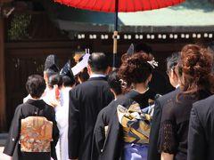 久々の明治神宮参拝