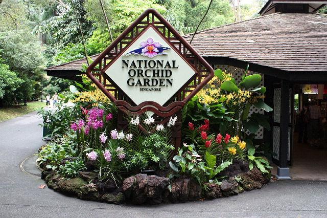 シンガポール三日目は、待望の一日フリータイムなので、シンガポール植物園でバードウォッチングを楽しみました。v(^o^)v<br />レストランで食事中に1時間半程のスコールに見舞われましたが、その間も窓から飛んでいる鳥を眺めていました。(^_^;<br /><br />四日目は成田にくる途中に香港で乗り換えなので、香港の空港でもバードウォッチングを楽しみました。(^_^;<br /><br />写真はシンガポール植物園内にある国立蘭園です。(有料)<br /><br />※ 2015.11.15 位置情報登録<br /><br /><br />