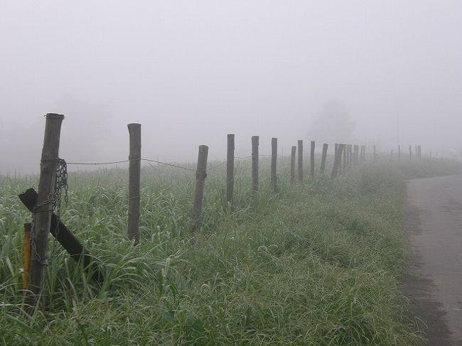 9月13日の早朝は、昨日の雨が上がり南から吹き込んだ暖気のため濃霧となる。<br />毎日の早朝ウォーキング約10キロの行程で出会えたものは・・<br /><br />濃霧が作り出す数々の自然現象にスポットを当ててみた。<br /><br /><br />