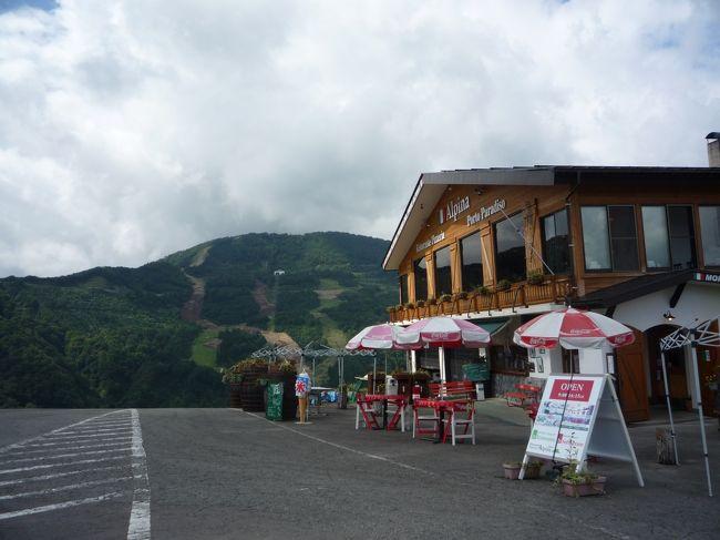 2009年夏の家族旅行です。<br /><br />南魚沼→湯沢→寺泊→上越と旅しました。