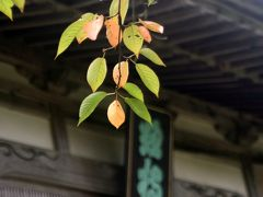 ひとり旅 [597] 34年前の想い出をさがして「總持寺祖院を訪ねる」石川県輪島市