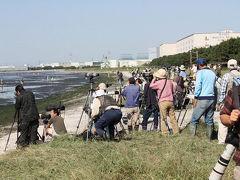船橋・習志野の旅行記