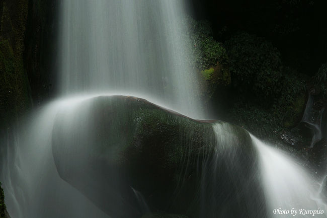 陰陽の滝(いんようのたき)<br /><br />和歌山県那智勝浦の滝といえば日本三大滝の那智の滝。<br /><br />実はこの滝の周辺には多くの滝が存在し、那智四十八滝といわれています。<br />実のところ那智の滝も上流に二の滝、三の滝があることから<br />「一の滝」の別名を持っています。<br /><br />さて、この那智四十八滝を代表する滝の一つが「陰陽の滝」です。<br /><br />場所は那智駅側から那智の滝に向かう途中、大門坂の下の入口を過ぎて少しのところにある<br />曼茶羅の里 河川公園に車を停め、少し引き返すような感じの場所に<br />橋があるのでそれを渡り、那智川の支流である東谷に沿って上って行きます。<br /><br />暫く(15〜20分)進むと発電所の関係施設があります。<br />それを越えると陰陽の滝があります。<br /><br />修験者が修行をしたとされるこの滝、<br />左右二本の滝であり、その為、陰陽の滝と呼ばれています。<br />又、夫婦の滝と呼ばれることもあるそうです。<br /><br />谷に岩が挟まれた様になっており<br />(↑ 〉○〈 こんな感じで、チョックストーンというそうです)、<br />   ]‖「<br /><br />そこから水が勢いよく流れ落ちます。<br />その水が滝壺に重なる二つの大きな岩に飛沫をあげています。<br />自然の造りあげた造形美にうっとりするとともに、驚かずにはいられません。