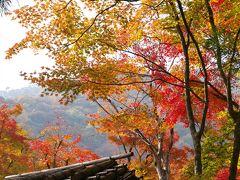 紅葉真っ盛りの京都、ついでに世界遺産姫路城へ