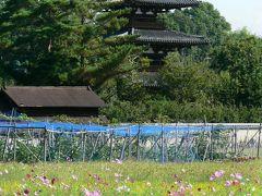 日本の旅 関西を歩く 奈良、近鉄筒井駅周辺と法起寺参道