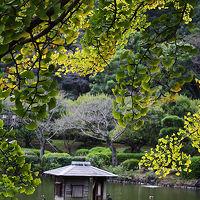 '09 「薬師池公園」初秋、黄昏散歩。