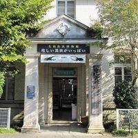 2009秋、名和昆虫博物館(1):10月31日(1):ギフチョウ、トリバネアゲハ