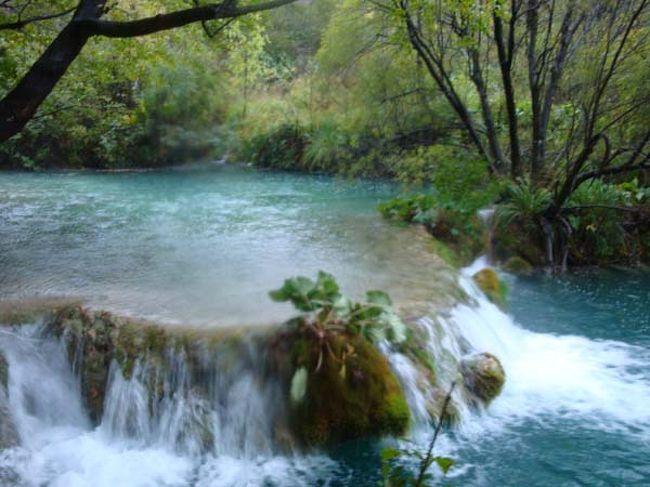 """2009年10月、「クロアチア・スロヴェニア ハイライト9日間」というツアーに娘と一緒に参加しました。<br /><br />さて、今回の旅、一番楽しみだったのはプリトヴィッツエ湖群国立公園のハイキングです。<br />クロアチア旅行を思い立った動機は、""""水が生んだ宝石""""と呼ばれるエメラルドグリーンに輝く大小16の湖と92カ所の滝が点在する世界遺産の森を自分の足で歩いてみたかったから・・・<br />""""干ばつに悩む森に16の湖を造った女王の涙""""の伝説ですが、今回、なぜか女王は我々の訪問に対して手荒い歓迎。あろうことか小雨どころか嵐を呼んでしまったようです。<br /><br /><br />♪♪♪♪♪♪♪♪♪♪♪♪♪♪♪<br /><br />ツアーの日程は、<br />①午前成田発→ウイーン乗り継ぎでクラーゲンフルト着。バスでスロヴェニアのブレッドへ(ブレッド泊)<br />②ブレッド湖観光(ブレッド島の聖母被昇天教会、ブレッド城見学)→(専用バス)ポストイナ鍾乳洞見学→リエカへ(リエカ泊)<br />③(専用バス)→プリトヴィッツェ湖群国立公園ハイキング(プリトヴィッツェ泊)<br />④(専用バス)→シベニク観光(聖ヤコブ大聖堂)→城塞都市トロギール観光→スプリットへ(スプリット泊)<br />⑤スプリット観光(ディオクレティアヌス宮殿)→(専用バス)ドブロヴニクへ(ドブロヴニク泊)<br />⑥ドブロヴニク観光(世界遺産の旧市街)(ドブロヴニク泊)<br />⑦午後、航空機でドブロヴニクからザグレブへ。着後市内観光(大聖堂、ミロゴイ墓地)(ザグレブ泊)<br />⑧朝ザグレブ発→ウイーン乗り継ぎ<br />⑨朝成田着<br />"""