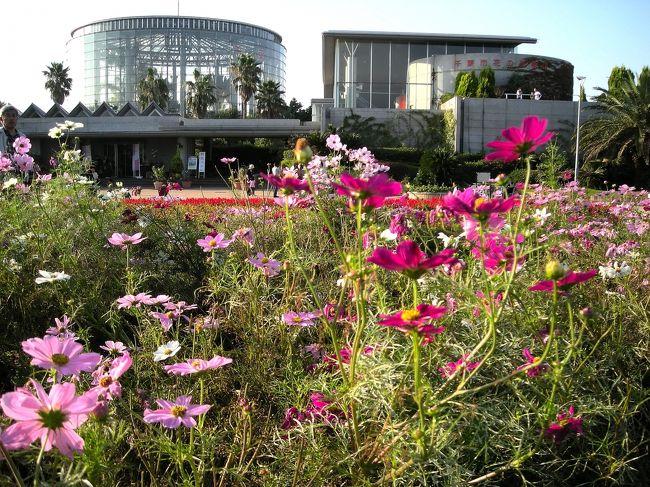 10月18日は千葉市民の日です。館内は無料開放日ということで、早速出かけて見ました。天気も良く花を見るにはいい日ですね。