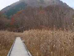 大沼園地は冬衣装を纏っていた。