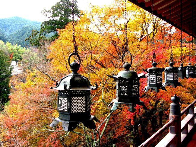 紅葉の名所 談山神社を訪ねました。<br />平日にもかかわらずにたくさんの訪問者がすばらしい紅葉を堪能されていました。<br /><br />中臣鎌足と中大兄皇子が、西暦645年の5月にこの地、多武峰(とうのみね)の山中で<br />「大化改新」の談合を行い、後にこの山を「談い山」「談所ヶ森」と呼び、談山神社の社号の起こりとなったそうです。