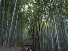 嵯峨野 竹林の道 ~ (その2)