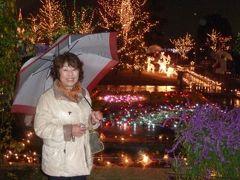 足利学校、鑁阿寺と光の花の庭