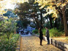 【東京観光】 秋色の上野恩賜公園