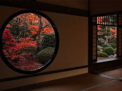 京都の紅葉 源光庵(げんこうあん)の紅葉  ~錦秋の京、彩り纏う寺社を巡りて。。(8)~   /京都市 高峯