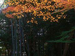 紅葉の古都 京都~奈良