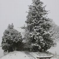 ひとり旅 [660] カメラを持って雪景色の中をドライブ①<雪景色編>広島県三次市