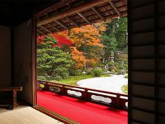京都の紅葉 曼殊院門跡(まんしゅいんもんせき)の紅葉 ~錦秋の京、彩り纏う寺社を巡りて。。(5)~ /京都市 洛北