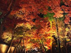 京都の紅葉、ダイジェスト版。~錦秋の京、彩り纏う寺社を巡りて。。(0)~ /京都市 洛東、洛北、落西