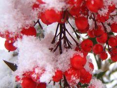 モノトーンに溶け込んで・・・雪見露天(下島温泉)