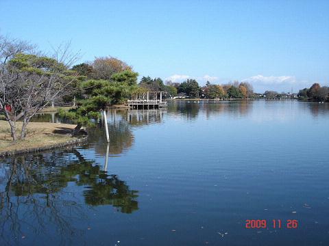 大塚池でバードウォッチング [2009](1)