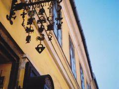 チェコ・オーストリア・ハンガリー中欧旅行(ウィーン市内)