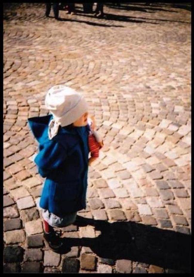 2006年10月14日~22日<br /><br />女3人でチェコ・オーストリア・ハンガリーの中欧3カ国の旅に出かけました。<br /><br />ツアーではなく、航空券とホテルのみ日本で予約し、行き当たりばったりの旅でしたが、かねてから憧れだったこの3カ国を旅することが出来て本当に楽しかったです。<br /><br />写真は旧市街広場で撮った女の子<br />カメラはCanonEos55、トイカメラのLOMOです。<br /><br /><br />1日目<br />成田→シャルルドゴール空港(経由)→プラハ<br /><br />2日目<br />プラハ市内観光<br />○プラハ城→黄金の小路<br />→旧市街広場(ティーン教会、ヤン・フス象、旧市庁舎、天文時計)<br />→ネルドヴァ通り~カレル橋<br />→ミュシャ博物館<br /><br />3日目<br />プラハ→チェスキーブディヨヴィツェ→ウィーン市内