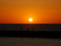 カナリア諸島の休日(1)~真冬のテネリフェ島は夏だった