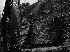 三千年都市 ベリーズのラマナイ遺跡
