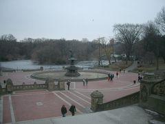 Central Park を横断