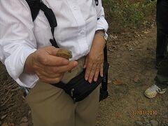 2010年1月k南ラオス鉄道廃線跡を見る