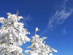 【蓼科】白銀の世界