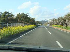 日本の道100選 房総フラワーラインのドライブ風景