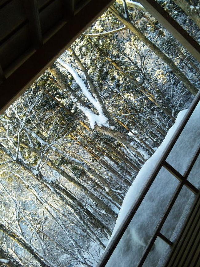 「やっぱり、冬は雪を見とかないと!」と誘われて<br />今年もまた、信州へ。<br /><br />ツレの選んだ「藤井荘」は、なかなかの宿でした。<br /><br />帰りは、2年ぶりの小布施&善光寺。
