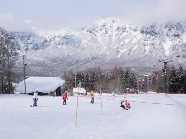 下の子が小学1年生になったので、今シーズンはスキーデビューしようと、戸隠スキー場へ行ってきました。<br /><br />事前に信州スノーキッズ倶楽部(県内外の小学生なら入会可能だったと思います)へ入会し、お得な特典を利用してレンタルスキーとスキースクールを利用しました。<br /><br />子どもたちは、半日の講習を受けただけですが、予想以上の上達に驚きました。