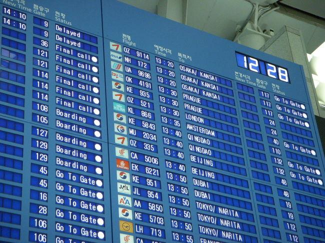 『外国出発、日本到着の片道航空券の、インター …