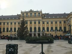 ニッキとあんちゃんのクリスマス市を訪ねて<ドイツ・チェコ・オーストリア>⑦再びのウィーン編