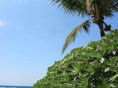 3月の、まったり沖縄旅③古宇利島の小さな宿へ