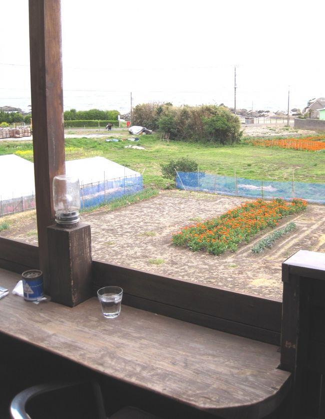 人口13000人程のエリアと聞いている旧千倉町のエリアは、<br /><br />なぜか人口の割にカフェが多い。<br /><br />寄り道してひと休み。<br /><br />特に海が見えて、花畑もちょっと見えたりすると、<br /><br />さらに南房総の旅って感じがします。<br /><br /><br /><br />また時間があったら寄ってみたいな。<br /><br />なんたって、オーダーしてもすぐ出てくるから、快適でした。
