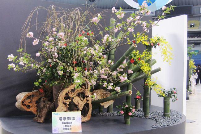 2010年開催のフラワードーム紹介の締め括りです。家元による活花展と名古屋国際蘭展20周年写真展の紹介です。