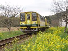 2010.3.17 筍、菜の花、いすみ鉄道