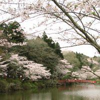 2010春 千葉・茂原公園