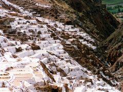 PERU/MARAS(ペルー・マラス) 標高3000mに浮かぶ白い水田