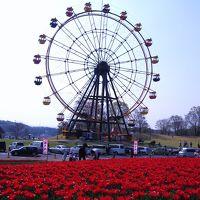 東京ドイツ村のflower garden☆