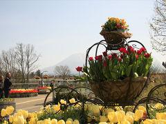 妖怪に誘われ春の山陰一泊二日の旅  とっとり花回廊編
