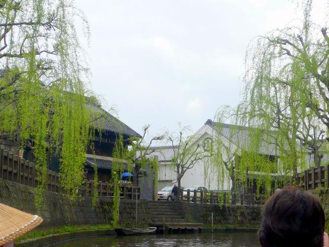 遊覧船に乗るには伊能忠敬旧宅前「出し」と呼ばれる石段を降りる。<br /><br />遊覧船は7人乗りと、13人乗りが有った。<br /><br />利根川水運の中継地として栄えた小野川は、当時は川幅がこの倍はあったらしい。<br /><br />両岸の川面に垂れ下がる柳の淡い緑の新芽の枝越しに、黒ずんだいかにも歴史を刻んだ木造の家並みの合間に白い蔵が見え隠れし、風情を醸しだしている。<br /><br />20分余のゆったりと遊覧。<br /><br />小野川遊覧船から戻り忠敬橋の近くの「千与福」で昼食。<br />
