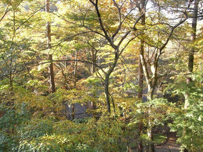 東京にいるのも残り半年となった2009年の10月に、大阪からは行きにくい観光地の軽井沢に行きました。<br /><br />旧軽井沢を見物して、夜は出向先の保養所で宴会したということなので、あまり写真の枚数は多くありませんが、ご参考になれば。